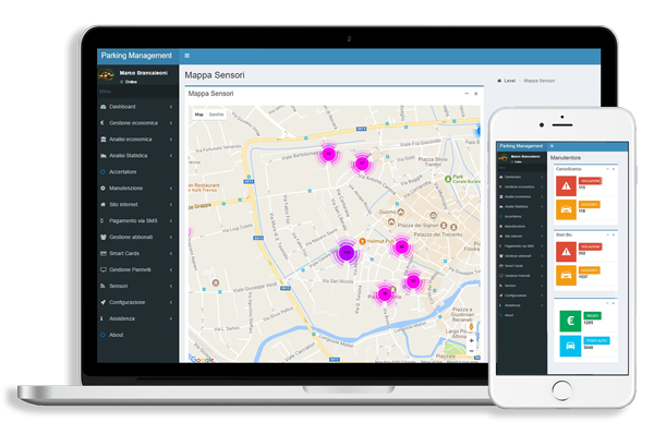 Software gestionale Smart Parking Systems